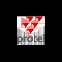 protel-1